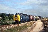24_55022_Dawlish_Warren.jpg